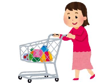 米沢清友会ヘルパーステーション サービス内容 生活援助